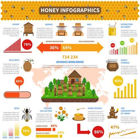Conjunto de infografías de miel