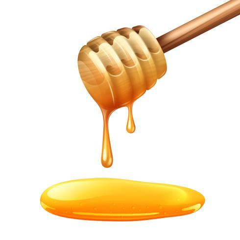 Ilustración de palo de miel
