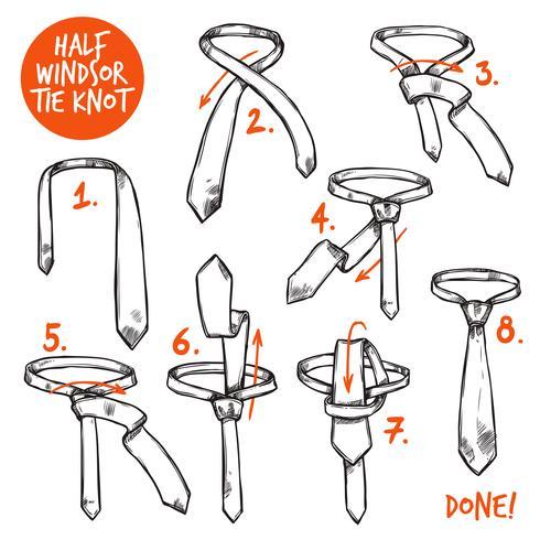 Croquis de noeud de cravate