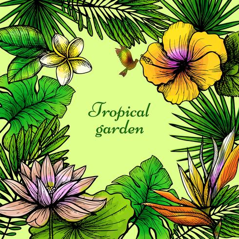Marco de hojas tropicales vector
