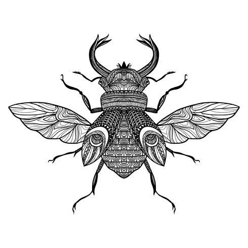 Sketch Decorative Bug