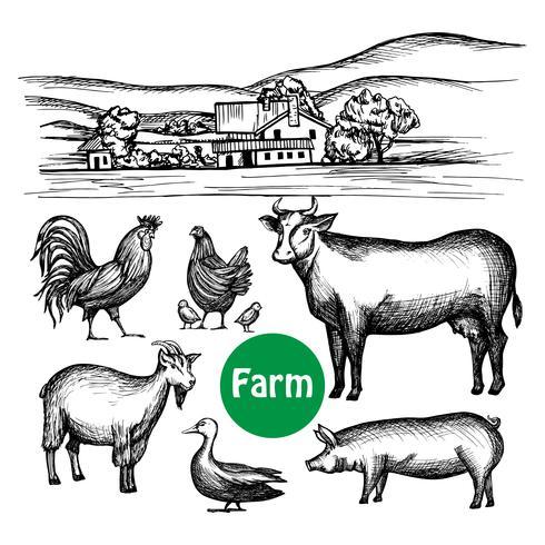 Conjunto de granja dibujado a mano