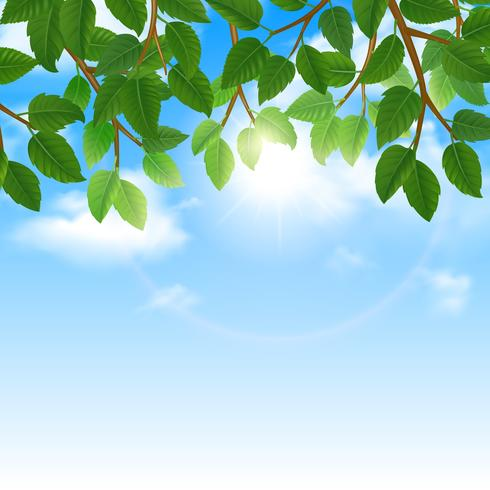 Green leaves and sky background border vector