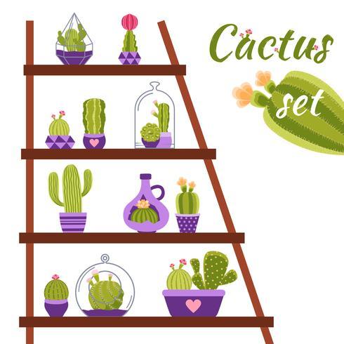 Cactus Shelf Illustration vector