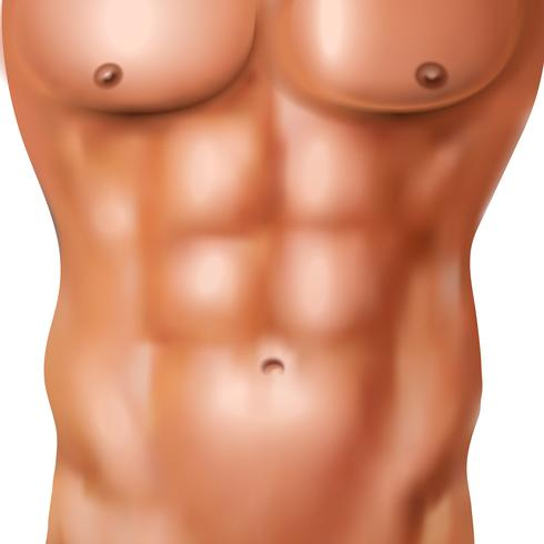 Realistic Man Abs Pack