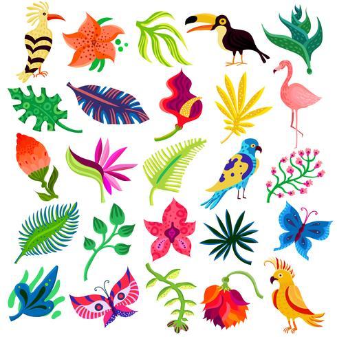 Troipcal Flora und Fauna