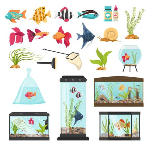 Colección Aquarium Essential Elements vector