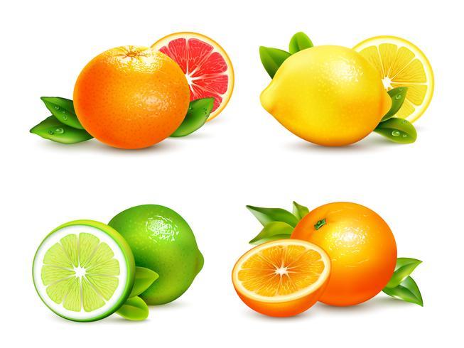 Citrusfrukter 4 Realistiska ikoner vektor