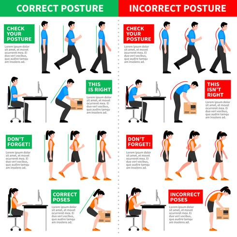 Correct And Incorrect Postures Infographics vector