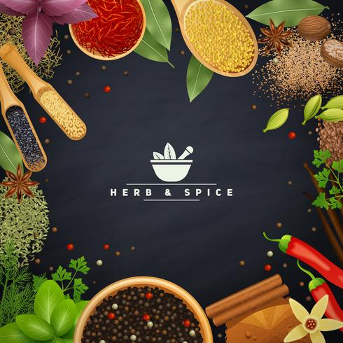 Frame With Herbs and Spices vector