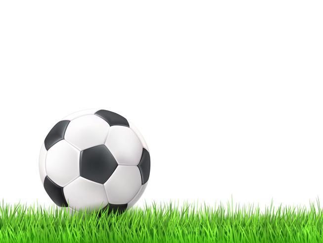 Voetbal bal gras achtergrond vector