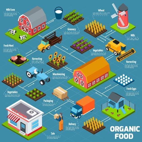 Fluxograma isométrico de alimentos orgânicos vetor