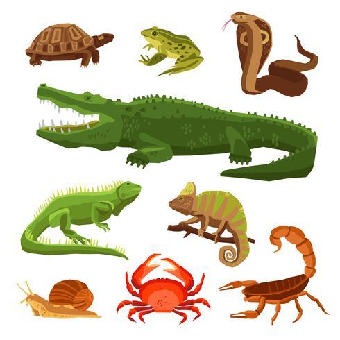 Reptielen en amfibieën Set vector
