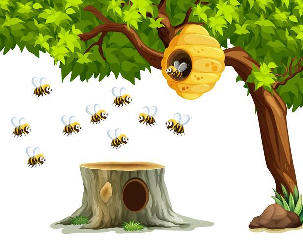 Abejas volando alrededor de la colmena en el árbol