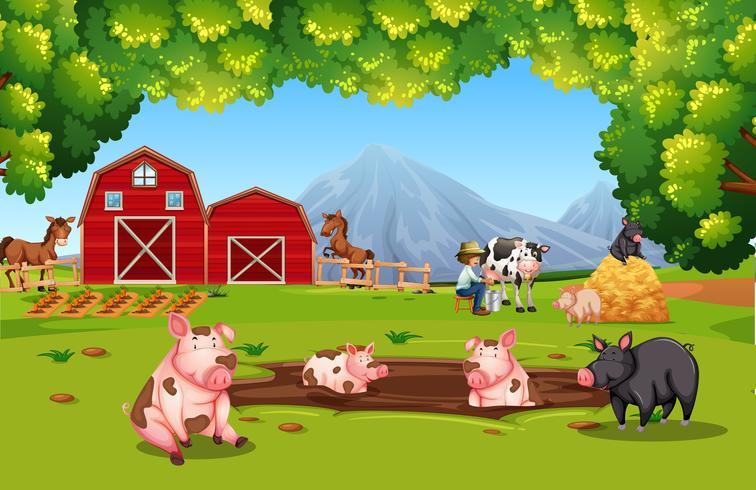 Animales de granja en tierras de cultivo