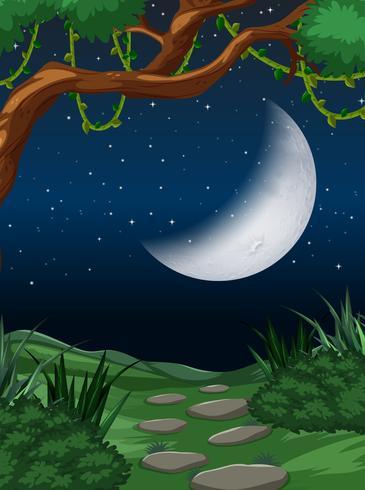Scène de la nature de la lune présente