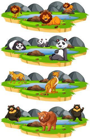 conjunto de animales en la naturaleza vector