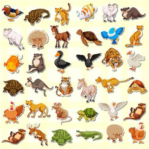 Conjunto de adhesivo animal.