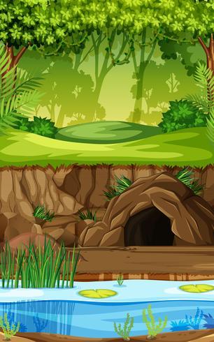 Un fondo de selva tropical vector