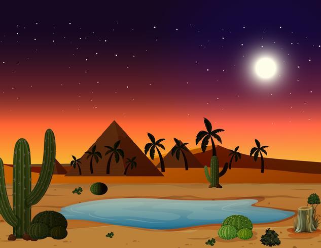Een woestijntafereel 's nachts