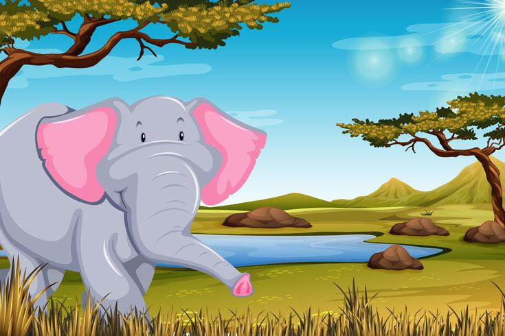 Elefante en escena africana