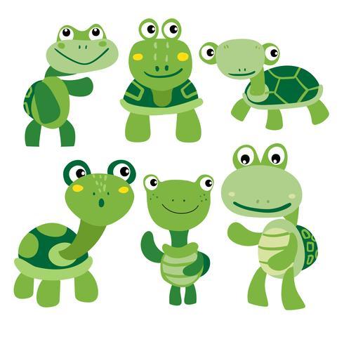 turtle character vector design