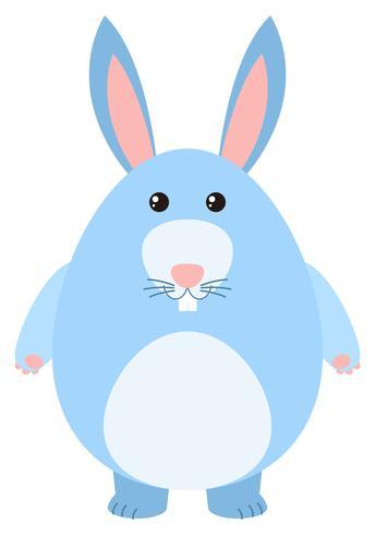 Blå kanin på vit bakgrund