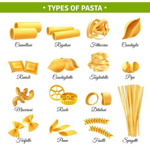 Pasta Types Infographics vector