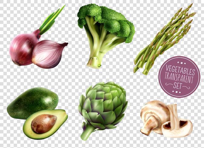 Set Transparente De Verduras vector