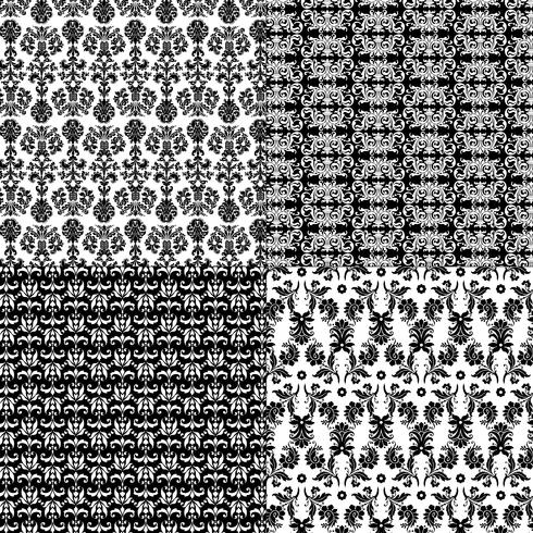 black and white damask patterns vector