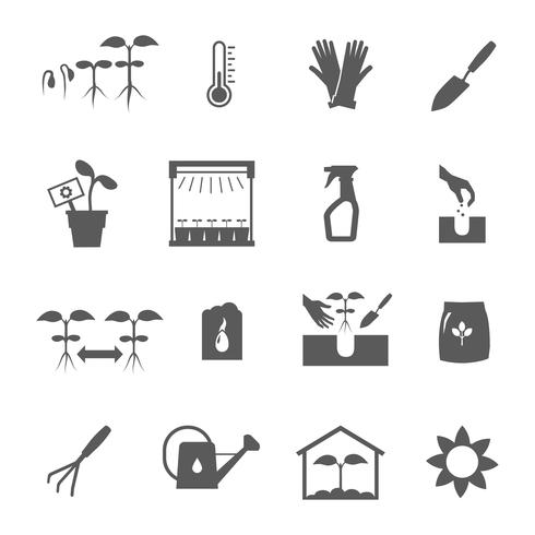 Conjunto de iconos blanco negro de plántulas