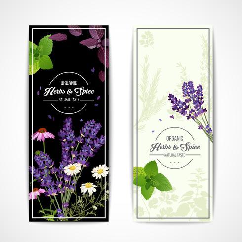 Banners de ervas com flores silvestres e especiarias