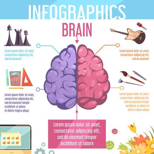 hersenen hersen hemisferen functies infographic poster