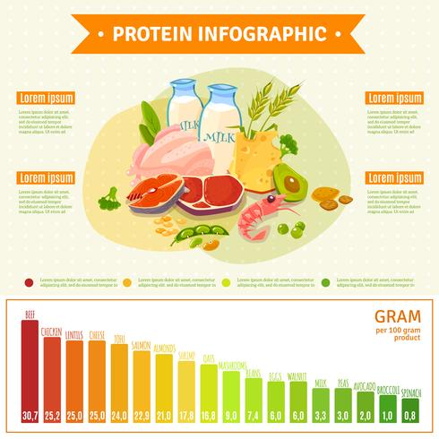 Healthy Protein Food Infographic Flat Poster
