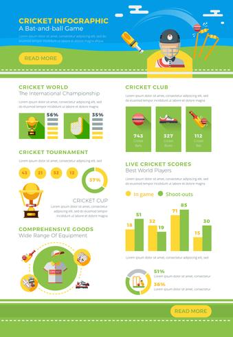 Affiche infographique de cricket vecteur