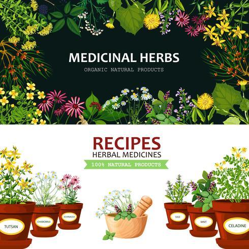 Medicinal Herbs Banners
