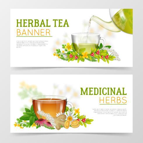 Chá de ervas e ervas medicinais Banners vetor