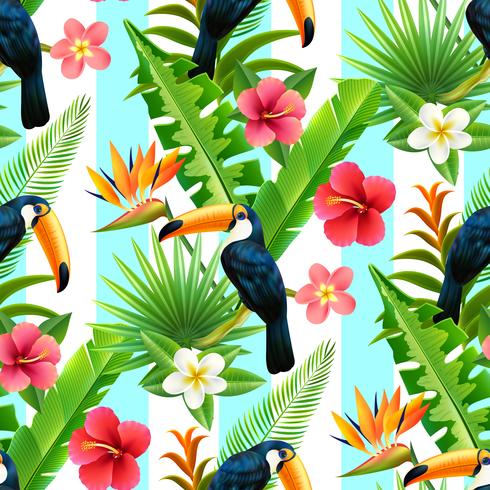 Selva tropical Tucán plano sin patrón