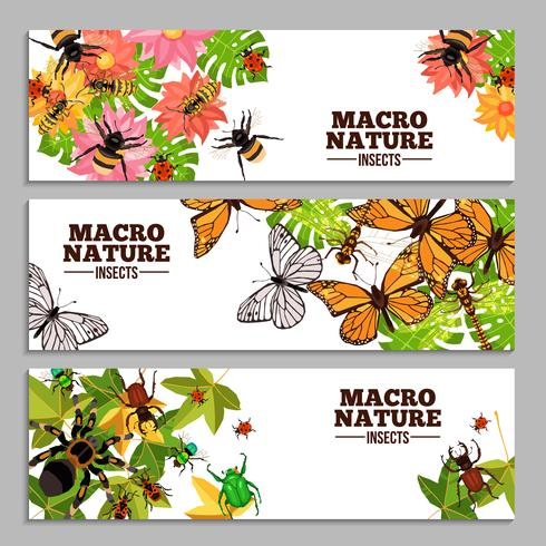 Insects Horizontal Banners vector