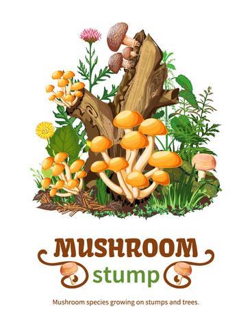 Wild Mushroom Species Growing On Stump vector