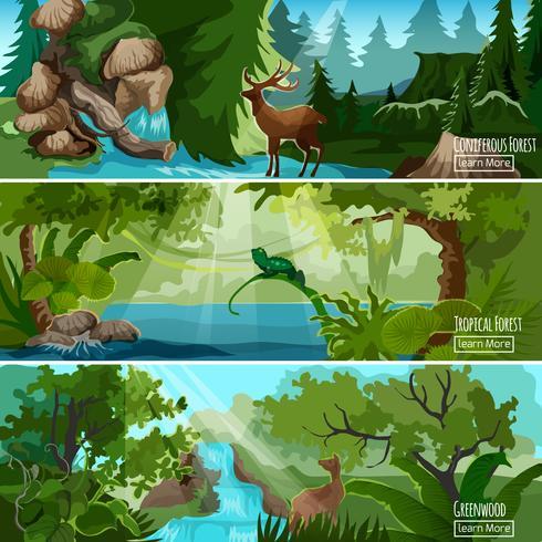 Conjunto de Banners horizontales de paisaje forestal vector