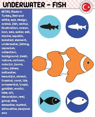 Fische, Fisch-Spezies - Unterwasserleben, Vektor
