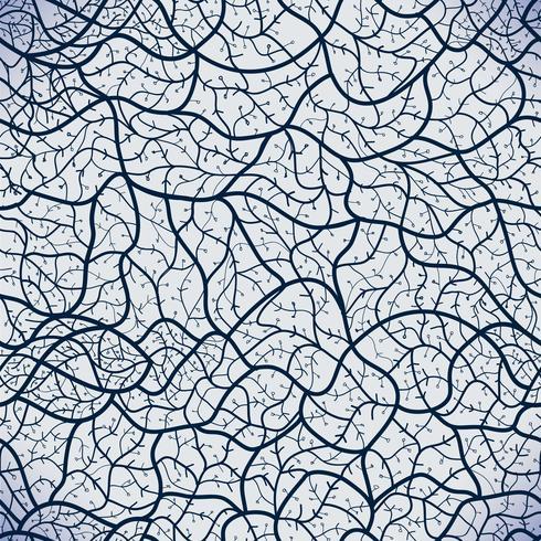 Patrón de encaje transparente de vector. vector