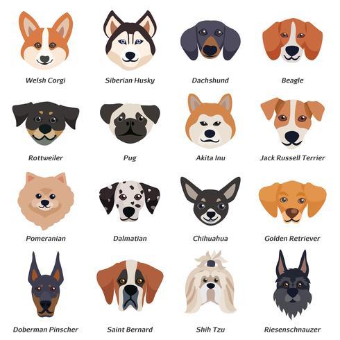 Conjunto de ícones de rostos de cães de raça pura vetor