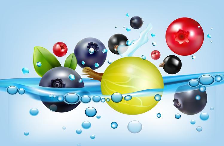 Poster met bessen en water vector