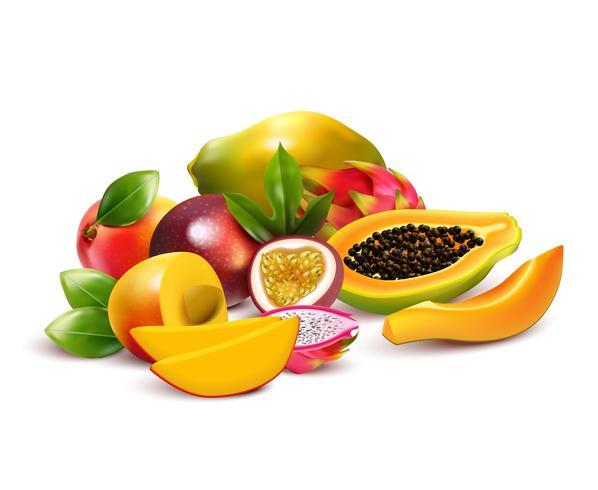 Composizione fruttata del mazzo tropicale vettore