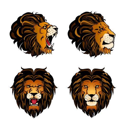 Colección de cuatro cabezas de león de color