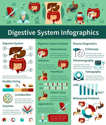 Digestive System Flat Infographics
