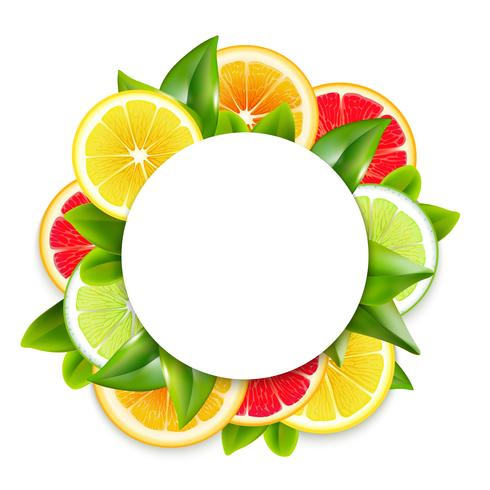 Citrus Fruits Slices Arrangement Round Frame