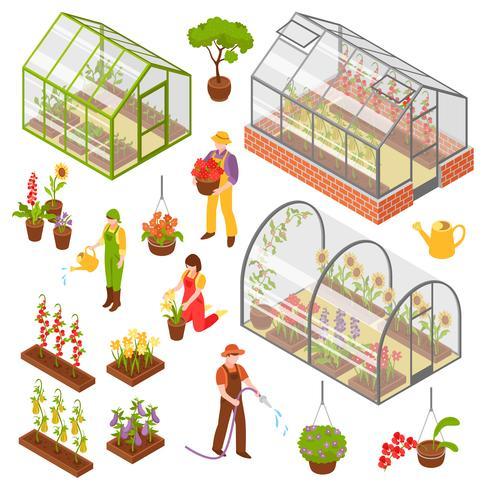 Isometrische 3d Greenhouse Icon Set